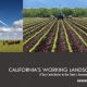 report cover California Working Landscape